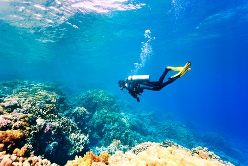 沖縄ダイビングなら、恩納村がおすすめ